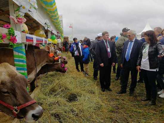 Программу развития сельских территорий начнут в Нижегородской области