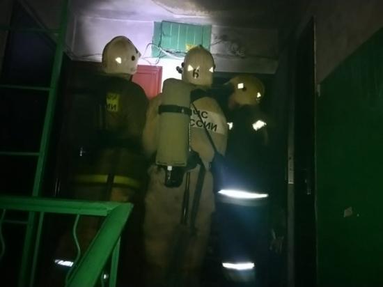 Двух детей вывели спасатели при пожаре в многоэтажке Тулы