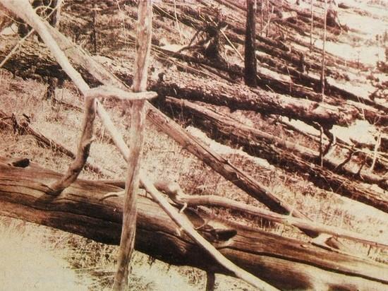 Сухая гроза подожгла лес в районе падения Тунгусского метеорита