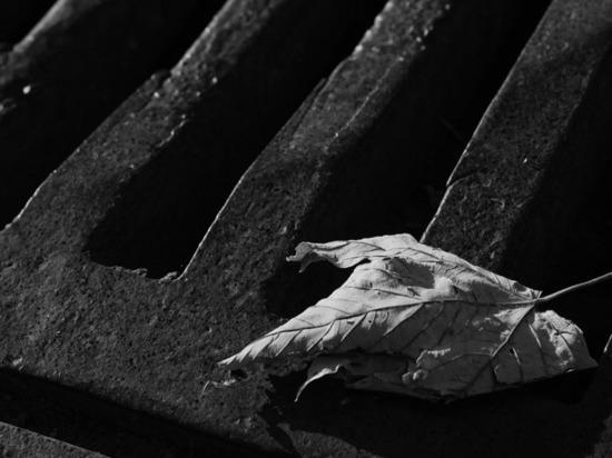 Сотрудника тульской фирмы затянуло в канализационную трубу в ЯНАО