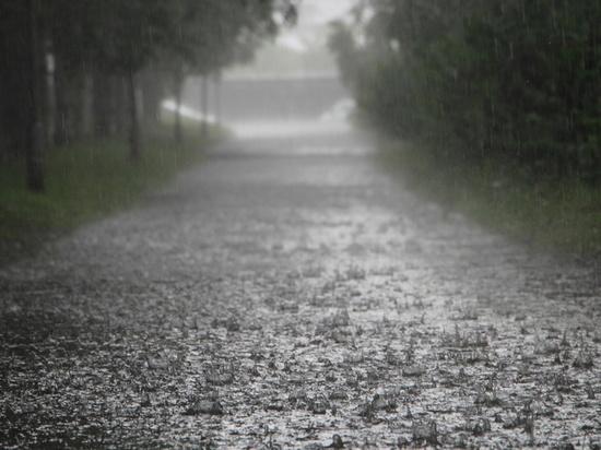 Сильные дожди прогнозируются в Хабаровском крае