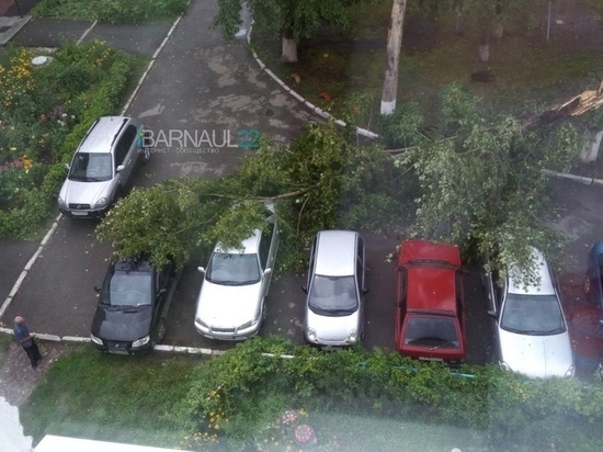 Барнаул переживает последствия урагана
