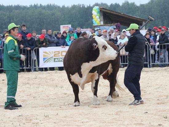 Международный эксперт высоко оценил нижегородских коров