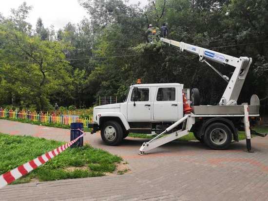 Около 260 опор освещения установят в парке Пушкина
