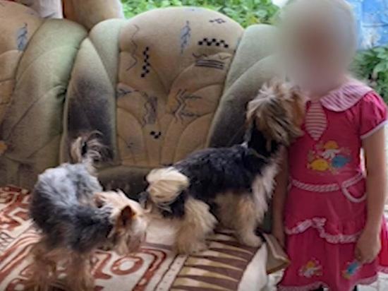 Дети, выросшие среди собак и мусора, живут по законам джунглей
