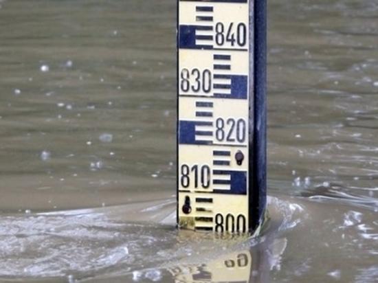 Три волны паводка прогнозируют у Хабаровска