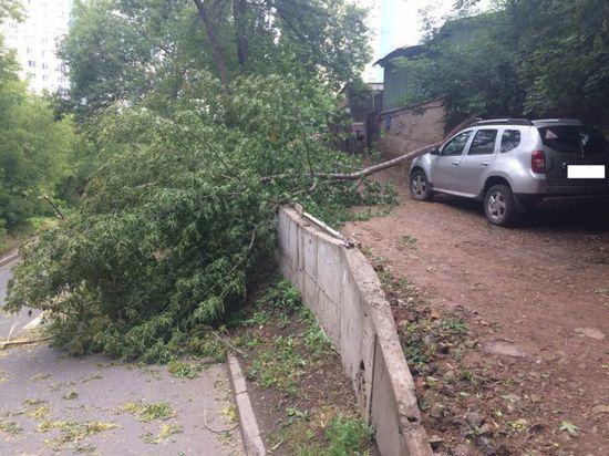 В Уфе штормовой ветер валил деревья на автомобили и провода