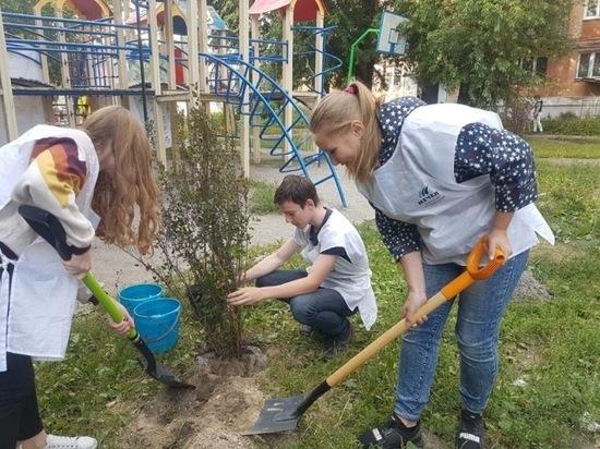 ЧМК и «Зеленый город» высадили в Челябинске 200 деревьев и кустарников