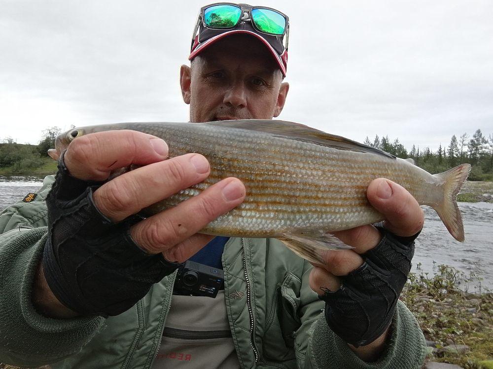 Рыбаки Ямала хвастаются уловом — фото речных «монстров»