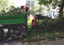 В столице Ставрополья разбираются с последствиями урагана