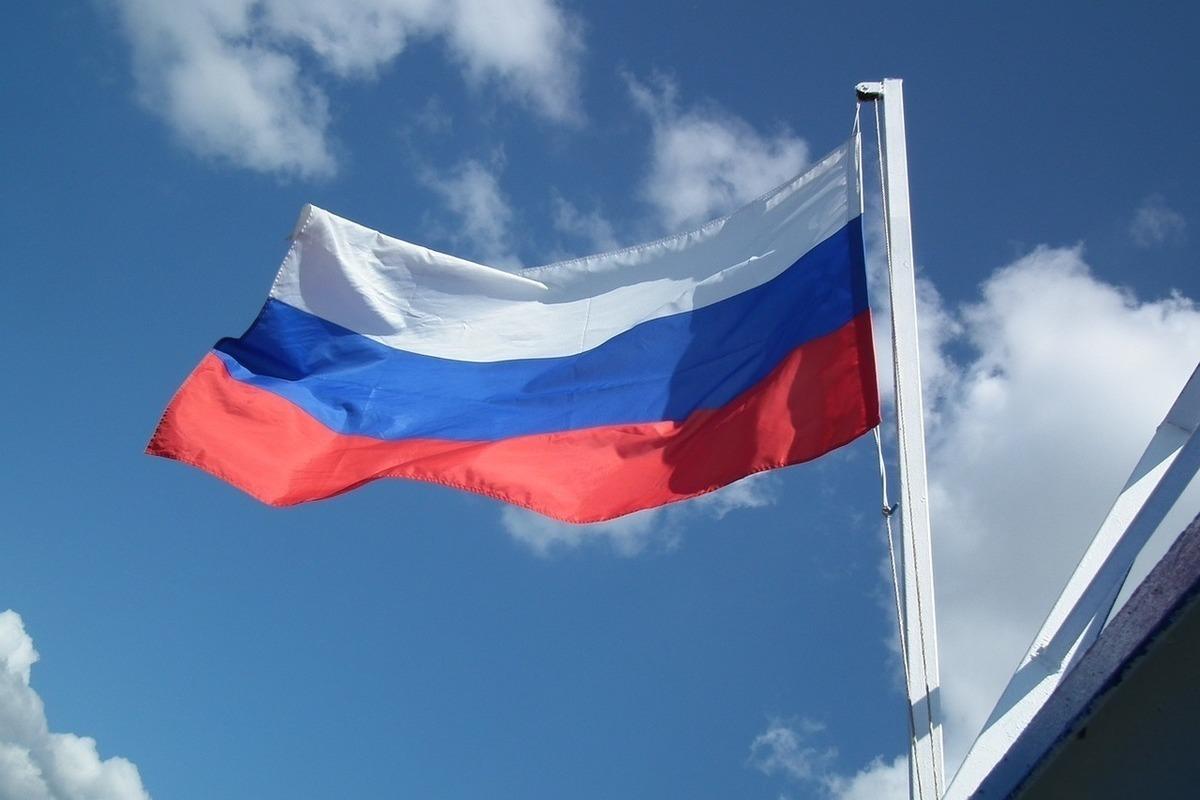 Картинки государственного флага, деду морозу