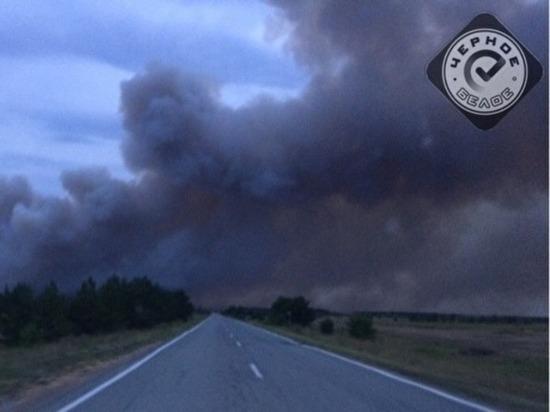 В Карталинском районе пожар уничтожил 110 гектаров леса