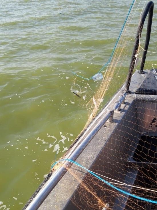 Больше километра браконьерских сетей обнаружены в Азовском море