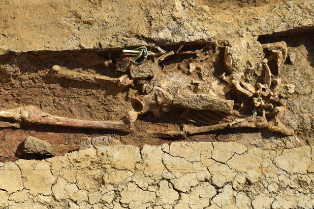 Археологи нашли на юге России сосуд со «слезами скорбящих»