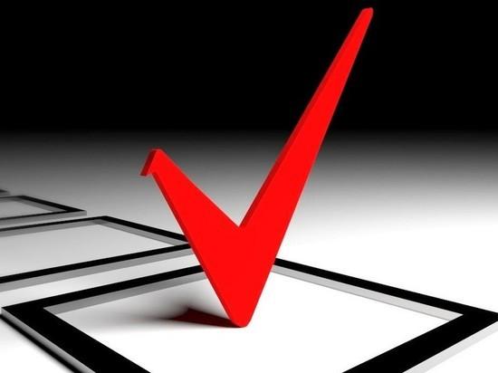 В Курске открыли «горячую линию» для избирателей