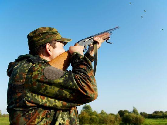 На Ставрополье продолжается распределение охотничьих разрешений