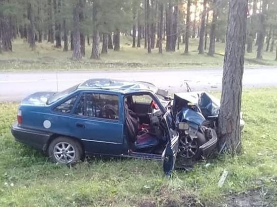 В Башкирии «Нексия» врезалась в дерево – пострадали два человека