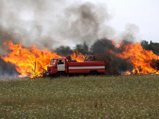 Учения МЧС: под Дзержинском тушили лесной пожар
