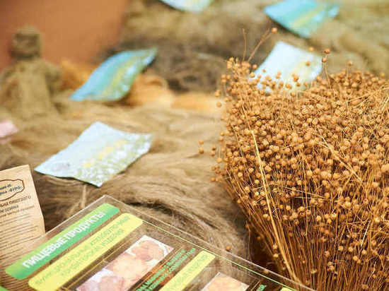 Канат с маслом: жителям Тверской области рассказали, что можно делать из льна