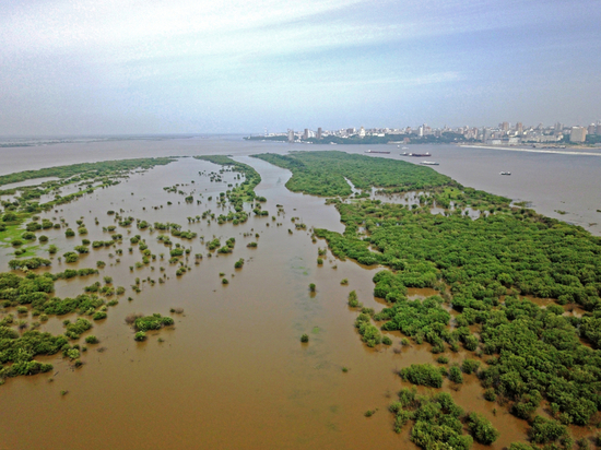 Паводок подтопил около тысячи дач в Хабаровске