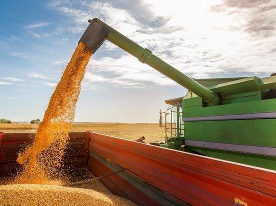 Из Оренбурга в Казахстан уехало 155 000 тонн проверенного зерна