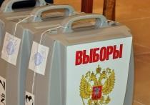 Кто станет новым мэром Новосибирска: результаты опроса