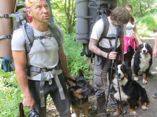 Туристов в Кавказском заповеднике оштрафовали за прогулку с собаками