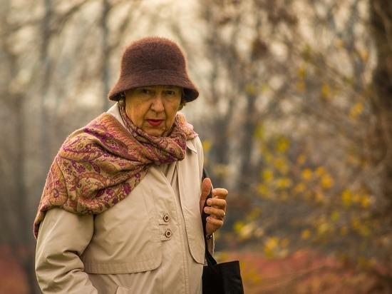 Рязанская область представила опыт по долговременному уходу на всероссийском семинаре
