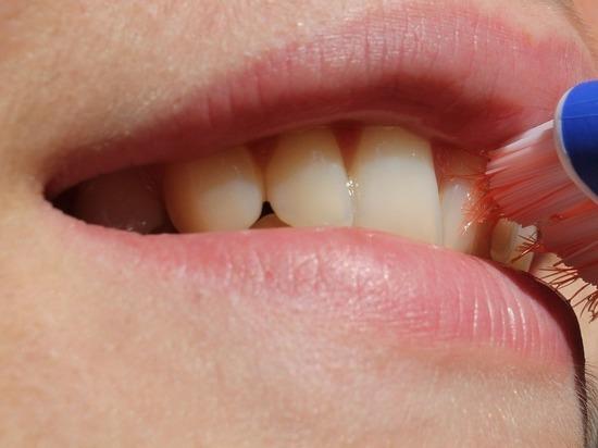 Учёные выяснили, как заставить зубы расти заново