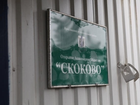 Ярославцы рассказали о результатах дежурства на мусорном полигоне Скоково