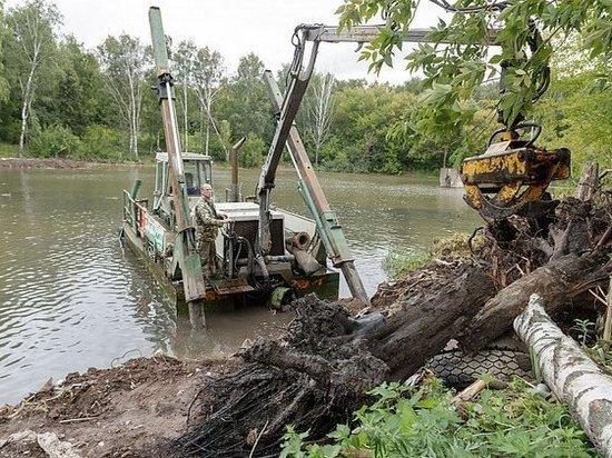 В Туле расчищают пруд в Рогожинском парке