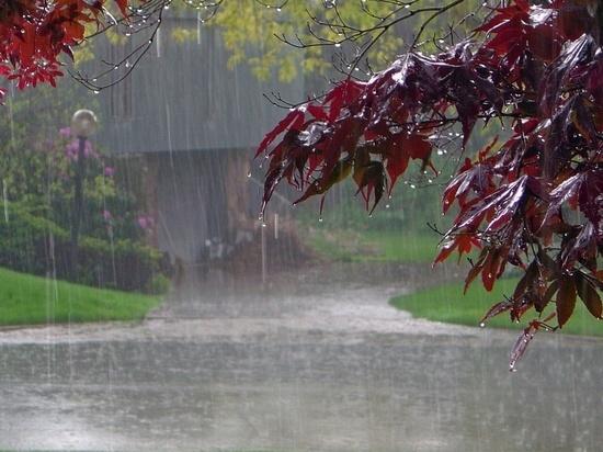 Синоптики обещают ивановцам еще одну дождливую неделю