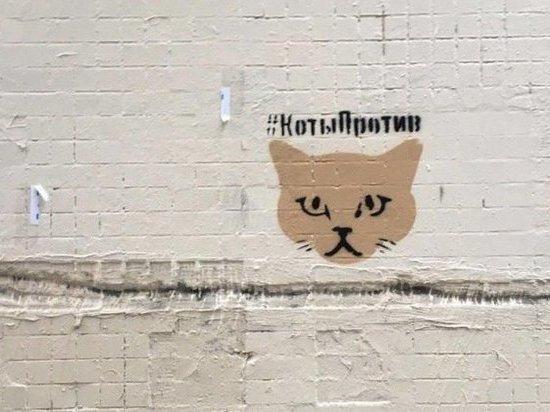 Вместо рекламы запрещенных веществ на домах Тулы появятся котики