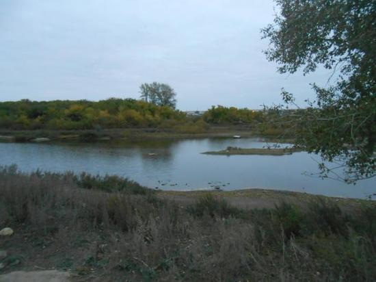 В Кваркенском районе утонул мужчина