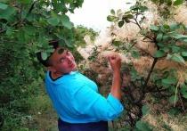 Пользователи сети высмеяли располневшую Савченко