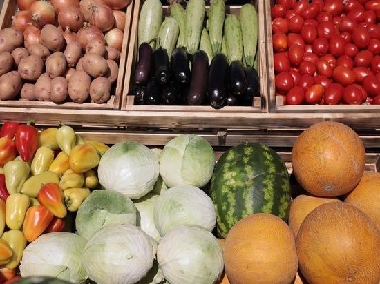 В Волгоградской области увеличили производство овощей