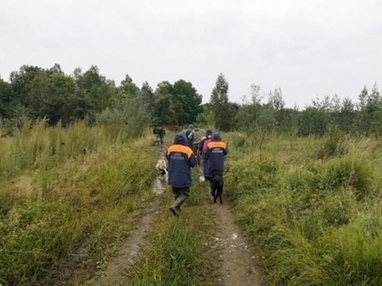 Двух пропавших грибников нашли в Хабаровском крае