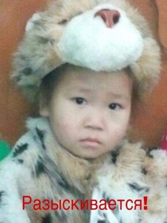 Глава Тувы поручил оказать максимальное содействие в поисках 5-летней девочки