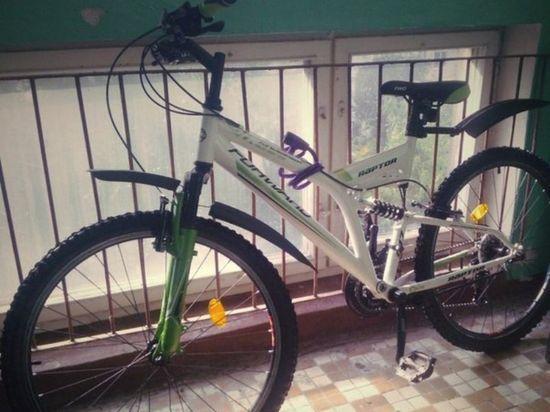 В Ясном нашли похитителя велосипедов