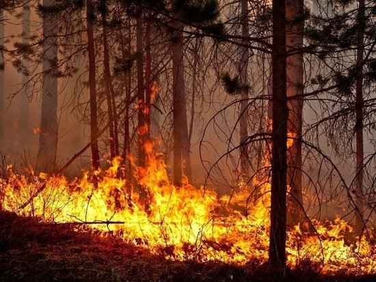 В 5 километрах от посёлков Приангарья горит лес