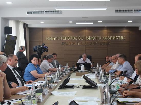 Ставрополье намерено уйти от импорта овощных семян