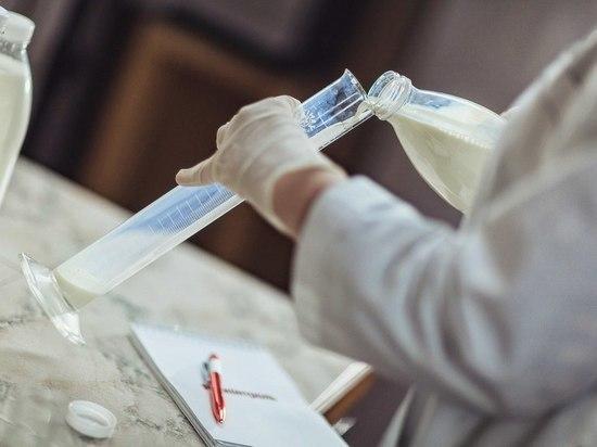 В томских детских садах, больницах и школах нашли фальсифицированные молочные продукты