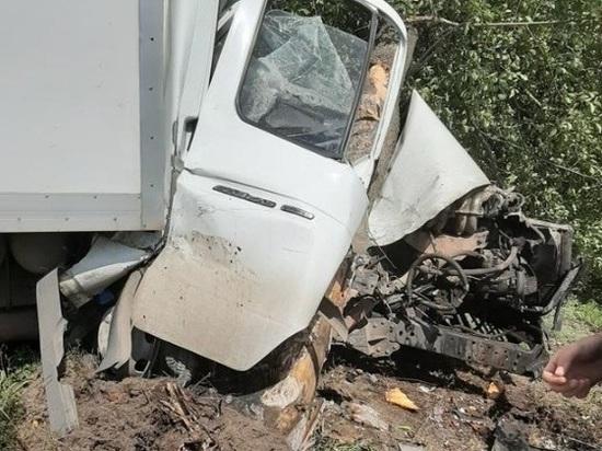 На Дону водитель грузовой ГАЗели врезался в дерево