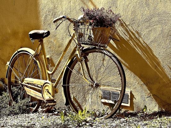 В Псковской области стали чаще воровать велосипеды