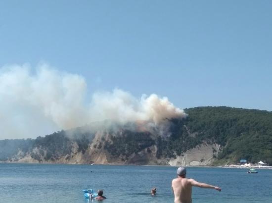 В Туапсинском районе загорелся лес: его планируют тушить при помощи авиации