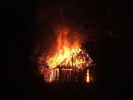 В Курской области в сарае сгорел ребенок