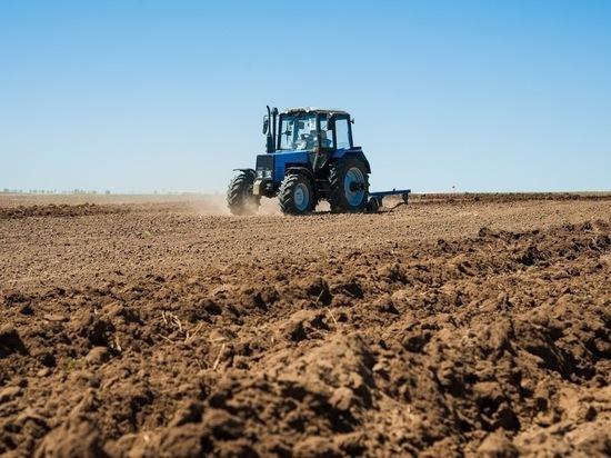 Волгоградские аграрии с помощью господдержки проведут посевную