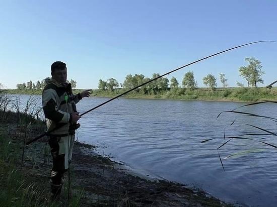 Архангельск прощается с летом: синоптики предсказали ухудшение погоды