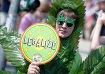 Легализация легких наркотиков — ключ от наркомании?