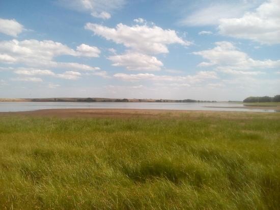 На реке Соленой под Кардаилово воду выкачивают с нарушениями